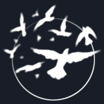 Celtic Circle Logo, Circle and Birds